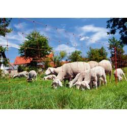 Rete per pecore e capre OVINET